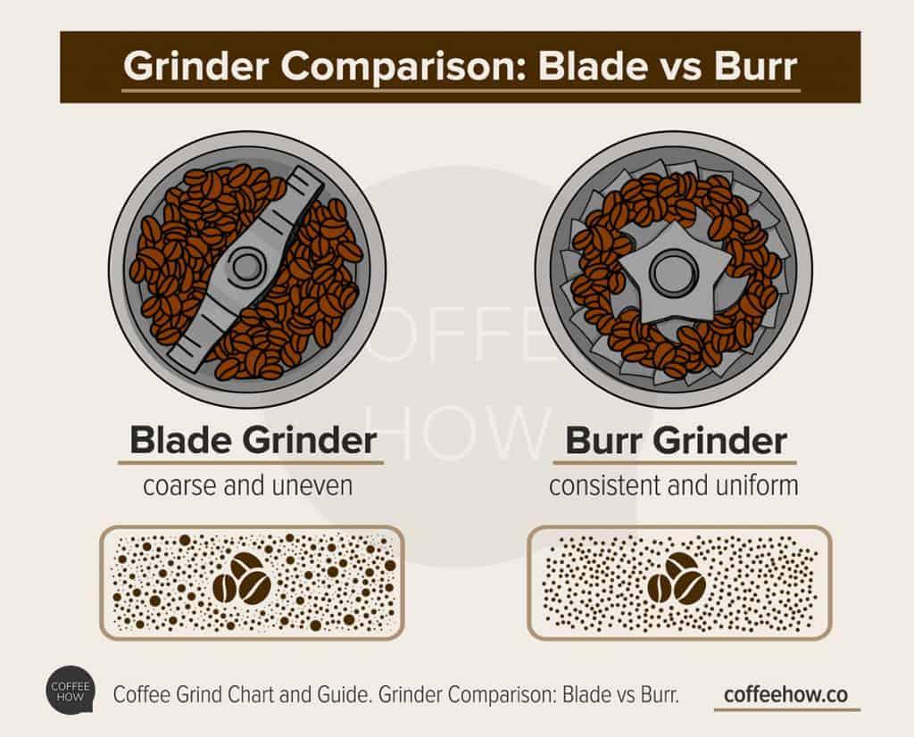 Grinder Comparison: Blade vs Burr infographics