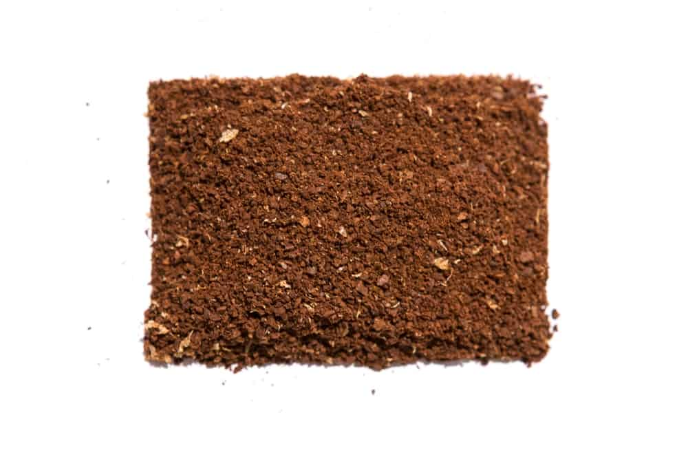 AeroPress brewing. Step 3: Add coffee grounds.