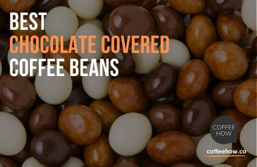 Best Chocolate Covered Coffee Beans - Reviewed