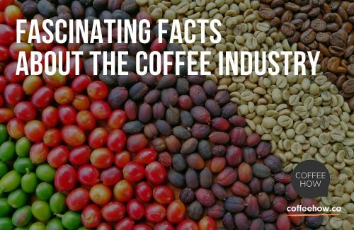 Fascinating Facts about the Coffee Industry