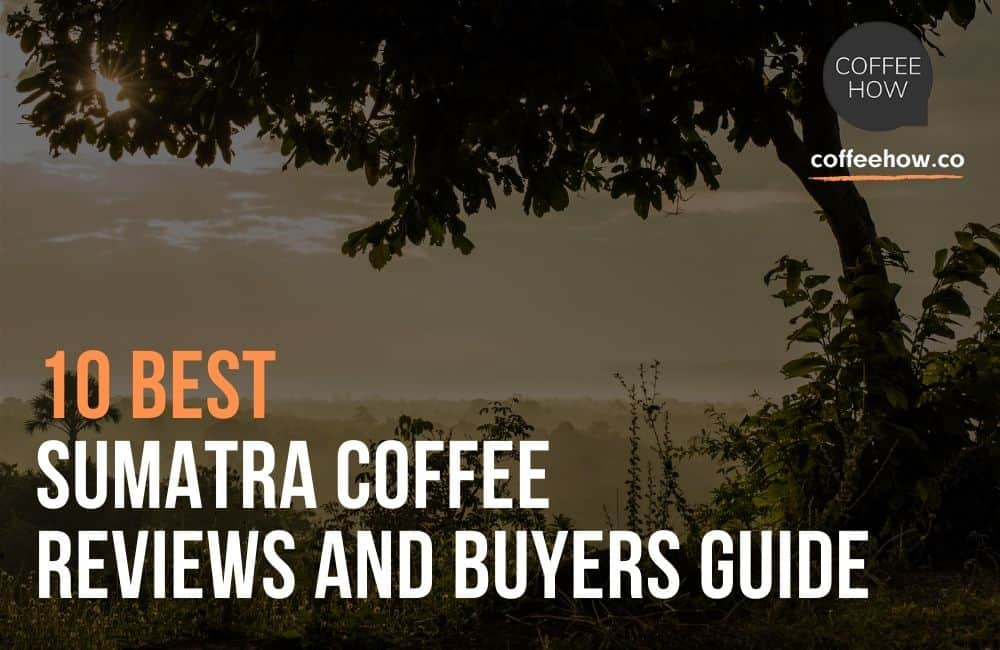 10 Best Sumatra Coffee Reviews and Buyers Guide