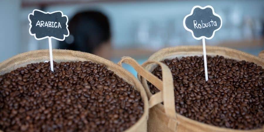 Types of Sumatran Coffee