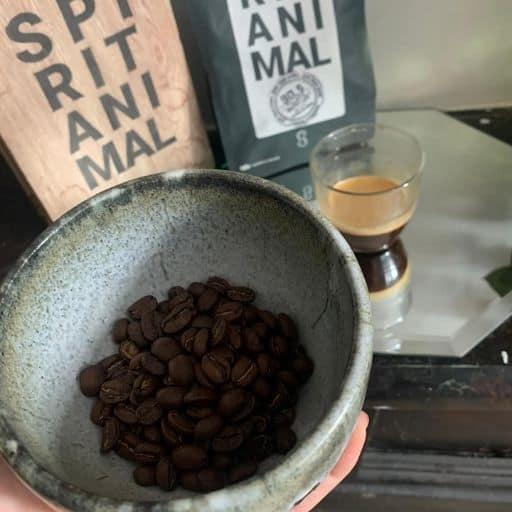Spirit Animal's Coffee cupping