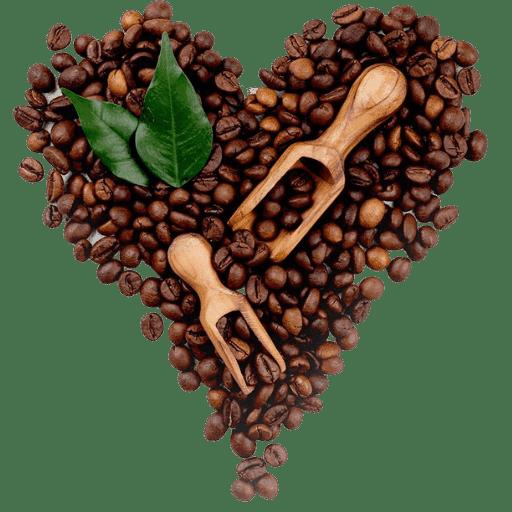 Spirit Animal Loves Coffee