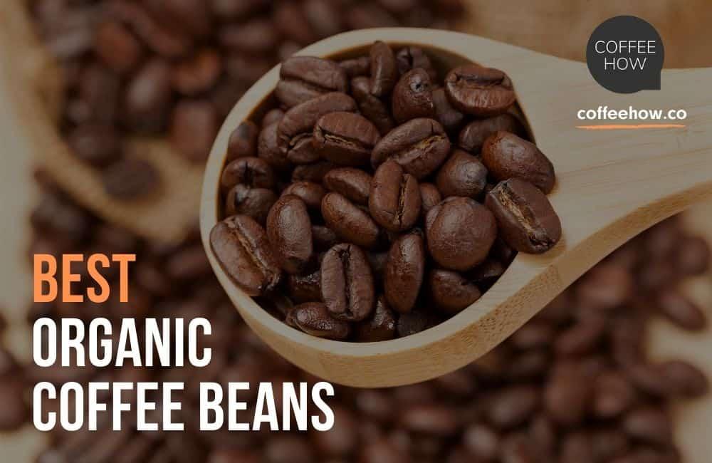 Best Organic Coffee Beans