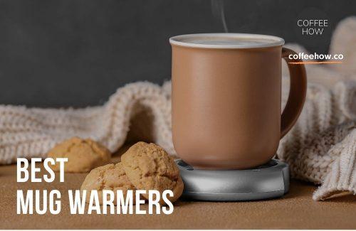 Best Mug Warmers Reviewed